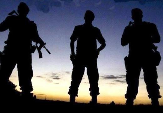 Seminário internacional discute unificação das polícias Civil e Militar no Brasil